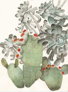 Art Print Aeonium and Prickly Pear Cactus