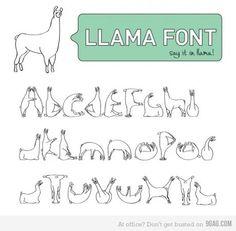 #llamas