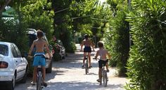 Camping Olé - #Campgrounds - $88 - #Hotels #Spain #Oliva http://www.justigo.org.uk/hotels/spain/oliva/camping-ola-c_23983.html