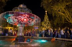 Hyde Park Village in Tampa Bay, MUST go see the giant Christmas Tree!!!
