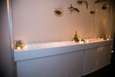 Hanging terrariums (table card area)