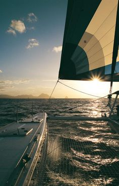multi-hull sailboat sales.