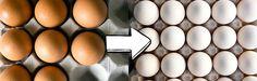 Swap #6: Brown eggs for white eggs http://www.womenshealthmag.com/weight-loss/grocery-swaps-for-weight-loss/slide/6