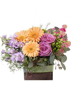 Embrace the wild and enjoy this seemingly untamed arrangement of peach gerberas, lavender roses and stock, and pink delphinium. Order Blooming Wild Floral Design from NORTHWOOD FLORAL MARKET - Saint Petersburg, FL Florist & Flower Shop.