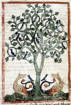 Doves roost in a peridexion tree, safe from the dragons below, except for two that have foolishly landed on the dragon's tails.Bodleian Library, MS. Douce 151, Folio 71v
