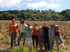 Mesmo com o término do curso de permacultura, a equipe do Instituto continua desenvolvendo uma série de atividades (Foto: Ricardo Bortolato/Divulgação)