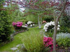 Es usar siempre las mejores plantas nativas para ajardinar. Además, debe incluir los árboles, arbustos y flores. Buen crecimiento, como la t...