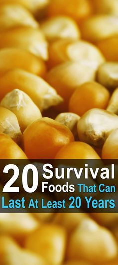 As long as you take the right precautions, these 20 survival foods will last at least 20 years, allowing you to ride out any disaster without going hungry.