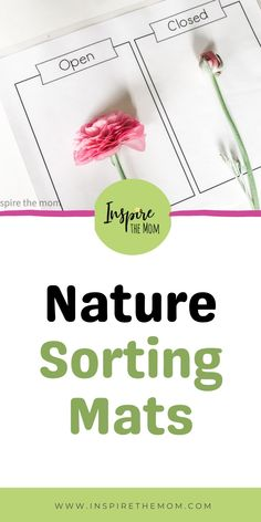 A great activity to get your kids exploring outdoors! Printable Nature sorting mat for all ages! On TPT for just 2.00 #printable #nature #sorting #mats #print #size #color #open #closed #weight #textures #living #nonliving #teacher #activity #activities #resource #nature #study #homeschool #home #school #classroom #science #outdoors #outdoor #explore