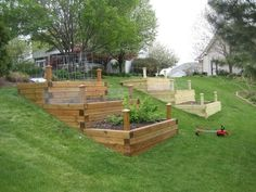 raised bed vegetable garden on a slope - Google Search