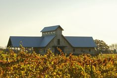 Vermilion Valley Vineyards, one of our favorite #Ohio #wineries!  Wonderful owners! Live entertainment!