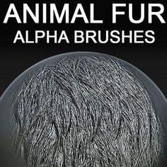 Possible brush I could work with to make fur.