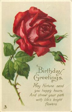 Birthday Greetings ~ large red rose & two buds