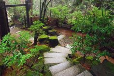 Japanese Gardens in Portland, OR. On my list for my day off while we're there for work!