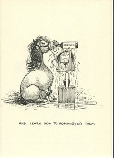 Thelwell Original Vintage Print Pony Horse Cartoon 1963 Comical Matted Mount | eBay