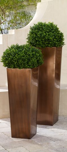 If space is an issue the answer is to use garden boxes. In this article we will show you how all about making raised garden boxes the easy way. We all want to make our gardens look beautiful and more appealing. Modern Planters, Outdoor Planters, Flower Planters, Flower Pots, Commercial Planters, Commercial Landscaping, Garden Troughs, Garden Planters, Interior Plants