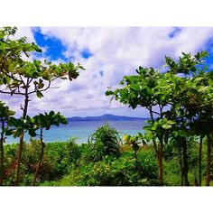 【choko41】さんのInstagramをピンしています。 《フリッパーの駐車場からの景色 プレートランチがボリューミー! #instadiary #instagood #instalike #instalife #okinawa #fashion #turquoise #healthy #swag #selfie #bbq #pension #pinacolada #awesome #favorite #sunset #yummy #沖縄 #夕日 #chillout #海 #me #my #beach #chilltime #sky #beer #ペンション #chillin》