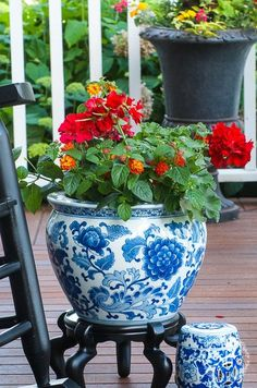 The bold colors of the flowers turn these gorgeous blue and white ceramic planters into show stoppers!