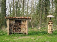 Het gaat beter met de bijen (dus ook met de honing en de imker) - Plazilla.com