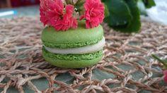 LadyS Macarons Matcha green tea