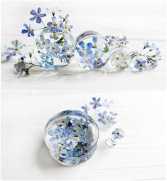 Forget me not blue flower plug earrings resin ear plug wedding plugs pressed flower wedding gauge ear tunnel terrarium jewelry - Forget me not blue flower plug earrings resin ear plugs wedding plugs pressed flower wedding gauges - Ear Tunnels, Tunnels And Plugs, Resin Jewelry, Handmade Jewelry, Ear Jewelry, Silver Jewelry, Gold Jewellery, Body Jewelry, Jewelry Crafts