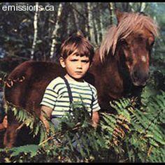 animal-movie-stars: POLY, le poney polisson