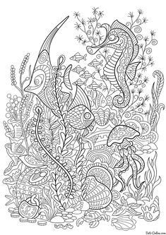 cartoon fish seahorse jellyfish crab shellfish and starfish isolated on white background hand drawn sketch for adult antistress coloring page buy - Fish Coloring Pages For Adults