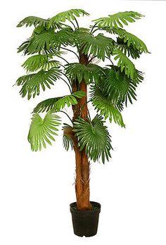 Fächerpalme 1,80 m Kunstpalme Kunstpflanze Kunstbaum Deko künstliche Palme in Möbel & Wohnen, Dekoration, Blumen & Künstliche Pflanzen | eBay