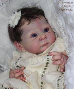 Lizzy Adrie Stoete Reborn Baby Girl Beautiful Tamara Leigh Reborns Tamara Auty Fake Baby