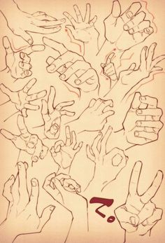 How to draw hands - human anatomy - drawing reference Drawing Skills, Drawing Poses, Drawing Techniques, Drawing Tips, Human Figure Drawing, Body Drawing, Anatomy Drawing, Drawing Hands, Hand Drawings