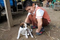 A 9-year-old boy from the Philippines started his very own non-profit, no-kill animal shelter. <---Why can't we ALL be like this 9 year old boy?!