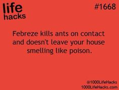Be careful though.  I've heard that Febreeze also kills birds so if you have one in your house, don't use this.