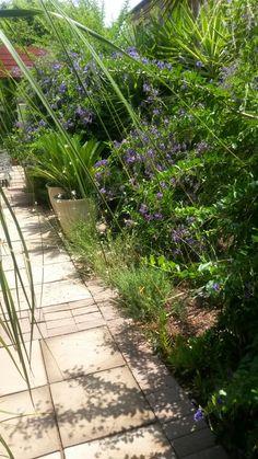 Container Gardening, Garden Ideas, Sidewalk, Plants, Art, Art Background, Sidewalks, Kunst, Landscaping Ideas
