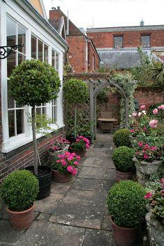 The Hidden Gardens of Bury St Edmunds by Karen Roe