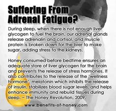 Chronic fatigue syndrome and fibromyalgia often have very similar treatments due to the fact that these two syndromes share a lot of common characteristics. If you are a chronic fatigue syndrome or fibromyalgia patient, the treatments Fatiga Adrenal, Adrenal Health, Adrenal Glands, Adrenal Fatigue Diet, Adrenal Failure, Adrenal Fatigue Treatment, Adrenal Insufficiency Symptoms, Adrenal Stress, Kidney Health