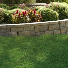 Retaining Wall Home Depot pavestone rumblestone 11.5 in. x 3.5 in. cafe concrete edger (144