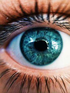 Eyes | Ojos | Color