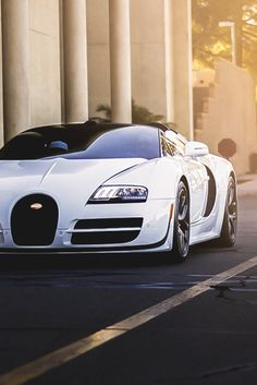 motivationsforlife: Bugatti Veyron Vitesse L'Orque Blanc //...