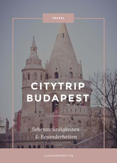 City trip to Budapest - Travel Ideas Budapest Travel Guide, Travel Destinations, Travel Tips, Capital Of Hungary, Reisen In Europa, Nightlife Travel, France Travel, Night Life, Travel Inspiration