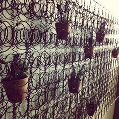 plants suspended on mattress springs