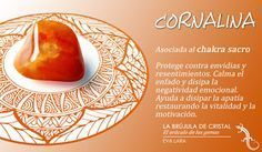 Cornalina. Chakra sacro. #labrujuladecristal LA BRUJULA DE CRISTAL, Eva Lara.