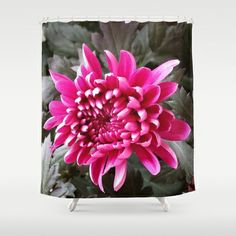 PLUM 'MUM Shower Curtain by Annie Koh - $68.00