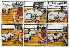 Different colored cat, same story