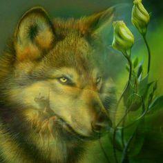 Manuela Kocadag added a new photo. Wolf Spirit, Native American Art, Husky, Fox, Fantasy, Artwork, Animals, Wolves, Facebook