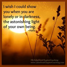 I wish I could show you when you are lonely or in darkness, the astonishing light of your own being. ~Hafiz Find more inspirational quotes at: https://www.facebook.com/LifesNextChapterCoaching Follow my blog on: http://lifesnextchaptercoaching.com/blog/