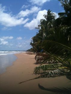 Mayaro, Trinidad. It doesn't look like this anymore though.