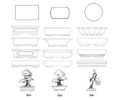AM BONSAI: Shin Gyo Go - Reglas de composicion y El arte de elegir macetas