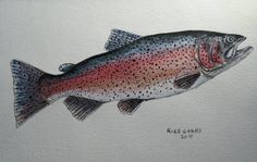 Rainbow Trout original painting by Goohsnest on Etsy. This piece was sold but I would be happy to paint one like it for you.