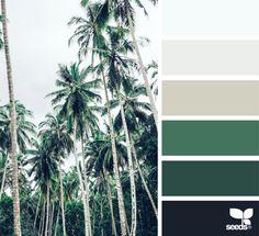 Color Tropic via @designseeds #designseeds #seedscolor #color #colorpalette #color #palette #colour #colourpalette