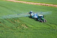 When Did We Start Using So Many Pesticides?  http://www.rodalesorganiclife.com/food/when-did-we-start-using-pesticides